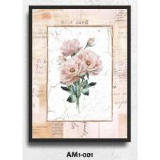 AM1-001