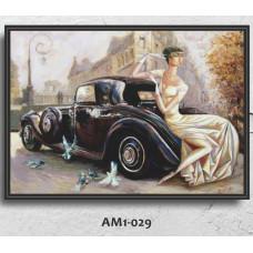 AM1-029