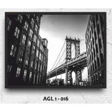 AGL1-016