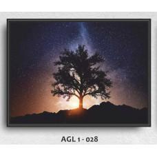 AGL1-028
