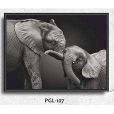 PGL-107