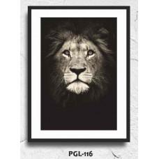 PGL-116