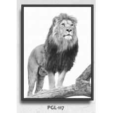 PGL-117