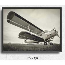 PGL-132