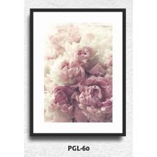 PGL-60