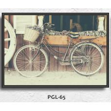 PGL-65