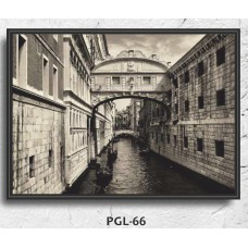 PGL-66