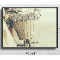 PGL-68