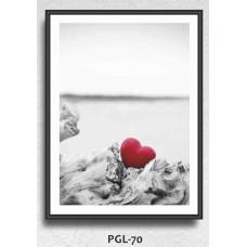 PGL-70